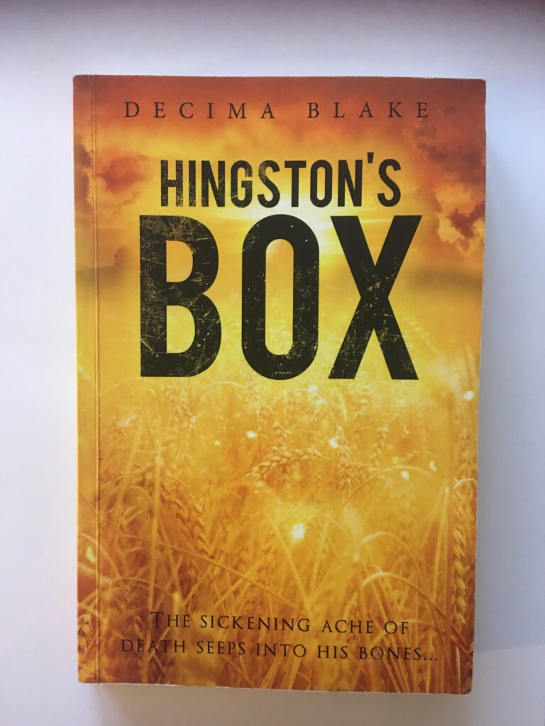 Books2All Q&A - Decima Blake author of Hingston's Box